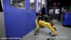 Testing Robustness - کلیپ