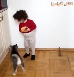 سیب منو بده بهش دست نزن سگ بد!!!
