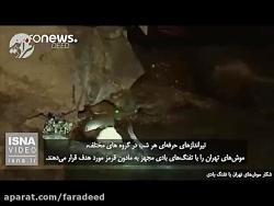 شکار موش های تهران با تفنگ