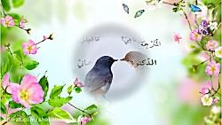 شعر مولانا(7)