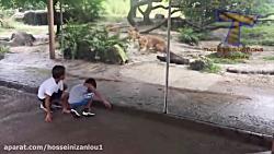 حمله حیوانات به کودکان(...