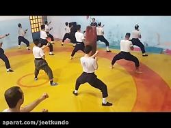 هنرهای رزمی (جیت کاندو)6