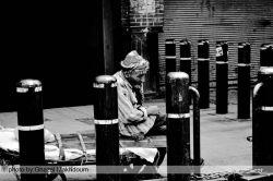 مرد بار بر پیر و خمیده ای که در نوروز سخت کار میکند