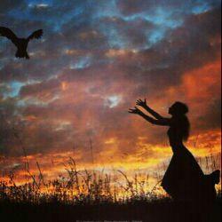 در نگاه کسی که درکی از پرواز ندارد هرچه اوج بگیری کوچکتر می شوی!