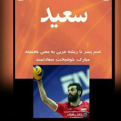 @seyedmohammadmousavi