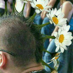 خداکنه مثل گل باشی عمرت مثل گل نباشه