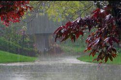 باران که بند بیاید،تازه  خاطره ها  شروع میکنند  به چکه کردن...