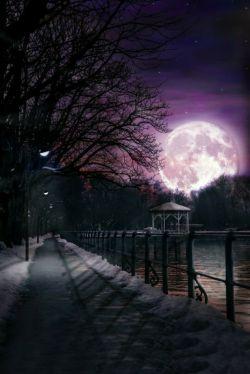 خدایا یادش بخیر آن شبانگاه را که بی تو قدم می زدم در کوچه ها و تو اخم می کردی که چرا بی من؟!
