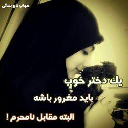 حجابم تاج بندگیمه....حجابم محدودیت نیست مصونیت است.