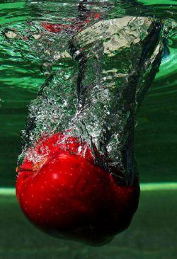 جاذبه سیب ،آدم را به زمین زد. و جاذبه زمین، سیب را - فرقی نمیکند سقوط سرنوشت دل دادن به غیر خداست به جاذبه ای می اندیشم که پروازم دهد ..... خدا ...