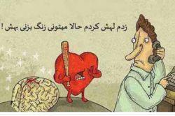 جدال عقل و قلب