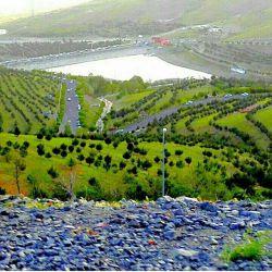 گاوازنگ زنجان
