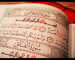 اگه گفتی اشتباهش کجاست؟ خوب دیگه نگرد اشتباهی نداره ثواب ختم یه قرآن را بردی منم تو ثوابتون شریکم