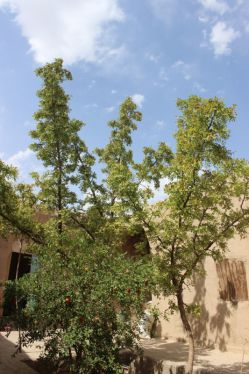 خانه حاج حسین بیکی94.4.29