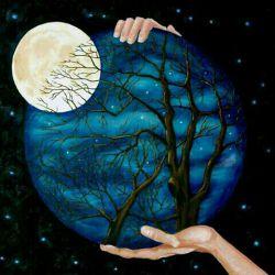 شب قراری است که ستاره ها برای بوسیدن ماه میگذارند و چه زیباست شرم زمین که خودش را به خواب میزند...شب همه ی دوستای گلم بخیر