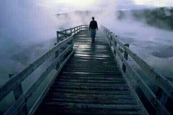 """دلت را بتکان..... اشتباهاتت وقتی افتاد روی زمین.... بگذار همانجا بماند..... فقط از لابه لای اشتباهایت ، یک تجربه را بیرون بکش.... قاب کن..... وبزن به دیوار دلت.... اشتباه کردن ، اشتباه نیست..... در اشتباه ماندن ، اشتباه است.....                   """" فروغ فرخزاد """""""
