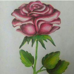#گل دوستاتونو تگ کنید و نقاشیه منو تقدیمشون کنید.