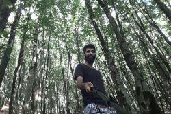 جنگلهای عطاکوه