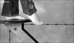روی سیم خاردار، باله میرقصم!!! بگذارید زخمی شود پاهایم... من بهانه ای میخواهم برای نرفتن... چون دیگر کسی راهم را سد نمیکند!!!