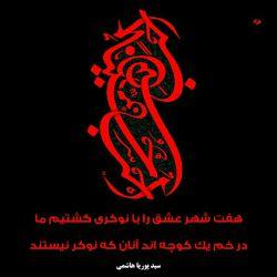 یا ابا عبدالله  //// باید به پای عکس ضریحت بلند شد /////// شوخی که نیست صحبت سلطان عالم است...!!!