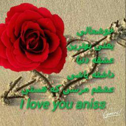 @anis.s.4
