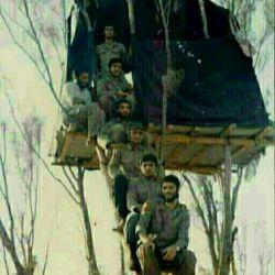 این شهدا کسانی هستند که به ترتیب شهید شدن ومعروفن به نردبان شهادت..