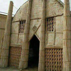 مسجدی  بابرگ درخت خرما