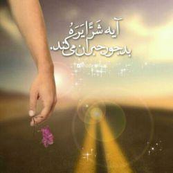 من حلالت میکنم چون توی قران خوانده ام ایه«شرا یره»بدجور جبران میکند...