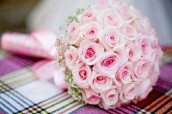 سلام عصر زیباتون بخیر وشادی...این گل تقدیم تک تک بانوان خوب لنزوری...روزتون مبارک اجیا...