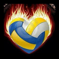 volleybal Atashin
