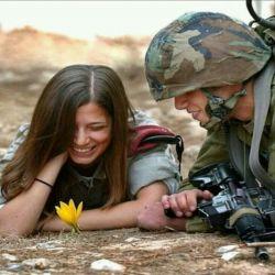 دوستی گلیست که فقط در دلهای پاک و بی آلایش میروید..............