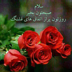 تقدیم به شما گلهای مهربان @