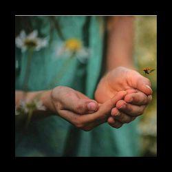 کافیست دستان تو در دست من باشد....