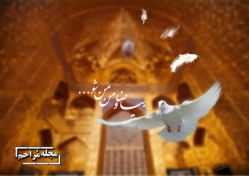 تولد امام رضا مبارک