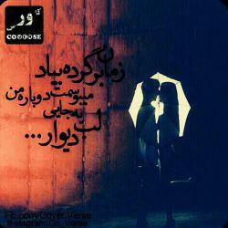 •°M:Z°•