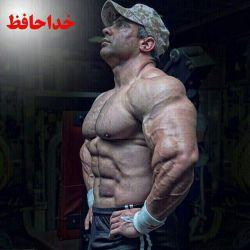 دوستان بیت الله عباسپور درگذشت.
