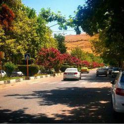 خیابان قصردشت، شیراز، ایران