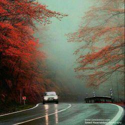 جاده ی عباس اباد بهشهر(مازندران)