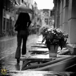 بی تو مهتاب شبی باز از آن کوچه گذشتم♥همه تن چشم شدم خیره به دنبال تو گشتم♡شوق دیدار تو لبریز شد از جام وجودم♥شدم آن عاشق دیوانه که بودم♡در نهانخانه جانم گل یاد تو درخشید♥عطر صد خاطره پیچید♡عطر صد خاطره پیچید...