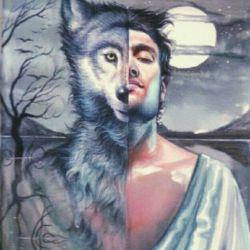 نه صدایش را نازک میکرد ونه دستانش را آردی،چگونه باید به گرگ بودنش پی میبردم....