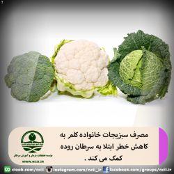 مصرف سبزیجات خانواده کلم به کاهش خطر ابتلا به سرطان روده کمک می کند .  سبزیجات خانواده کلم نظیر کلم برگ ، گلکلم و کلم بروکلی حاوی ترکیباتی هستند که موجب تقویت سیستم ایمنی بدن شده و به پیشگیری از سرطان روده کمک می کند . همچنین ، میزان زنده ماندن زنان مصرف کننده کلم نسبت به سایر زنانی که این سبزیجات را مصرف نمیکنند؛ پس از ابتلا به سرطان سینه بیشتر است . کلم سرشار از آنتی اکسیدان و کلسیم است و می تواند کلسیم مورد نیاز روزانه را تأمین کند . مطالب تکمیلی در : http://www.ncii.ir