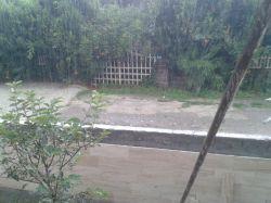 باران دیروز شمال.