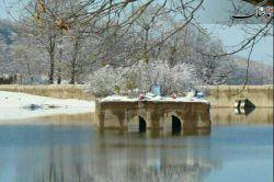 جنگل عباس آباد بهشهر در فصل زمستان