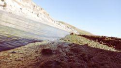 ما ازین دریا، که کشتی در میانش بردهایم ...گر به ساحل میرسیدیم، از میان اندیشه نیست  ....شعر از اوحدی...عکس از ما.... سد علویان مراغه