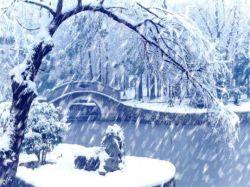 به قشنگی زمستان سرد