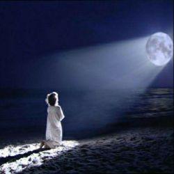 وقتی دلت گرفته  خــدا به فـرشتـه هاش میگه :  نیگــا .. دوباره یادش رفته من هستــم !!
