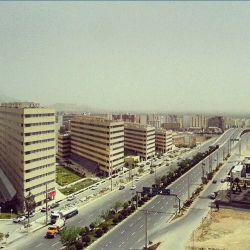 کوی وحدت، شیراز