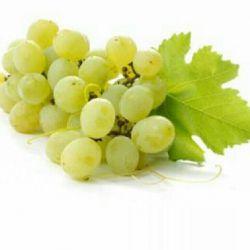 قرارمان فصل انگور...شراب که شدم تو جان بیاور من جان..