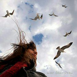 زندگی را تو بساز... نه بدان ساز که سازند و پذیری بی حرف.. زندگی یعنی جنگ تو بجنگ.. زندگی یعنی عشق.. تو بدان عشق بورز...