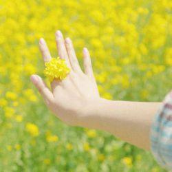 شخصی از خدا دو چیز خواست...... یک گل و یک پروانه...... اما چیزی که به دست آورد  یک کاکتوس و یک کرم بود...... غمگین شد.با خود اندیشید شاید خداوند من را  دوست ندارد و به من توجهی ندارد...... چند روز گذشت...... از آن کاکتوس پر از خار گلی زیبا روییده شد و آن کرم تبدیل به پروانه ای شد...... اگر چیزی از خدا خواستید و چیز دیگری دریافت کردید  به او اعتماد کنید......... خارهای امروز گلهای فردایند......